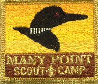 1996 Many Point Patch